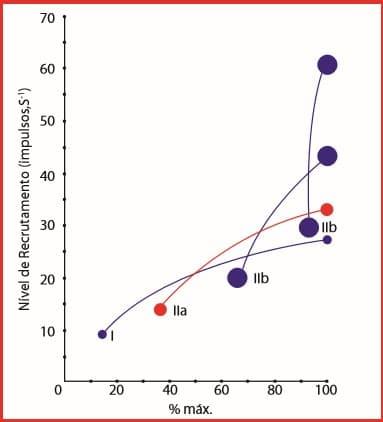 Gráfico 1.2 Princípio do tamanho no recrutamento das unidades motoras